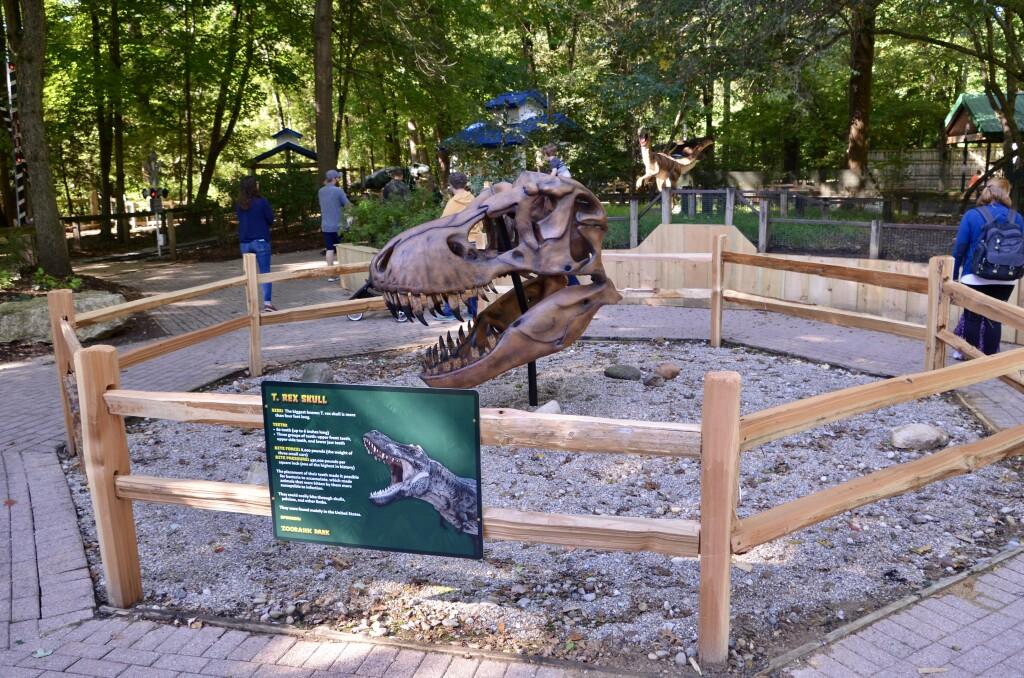 Zoorassic Park Binder Park Zoo T Rex Skull