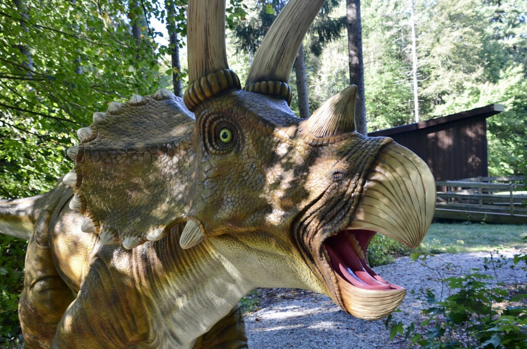 Zoorassic Park Binder Park Zoo Triceratops Close Up