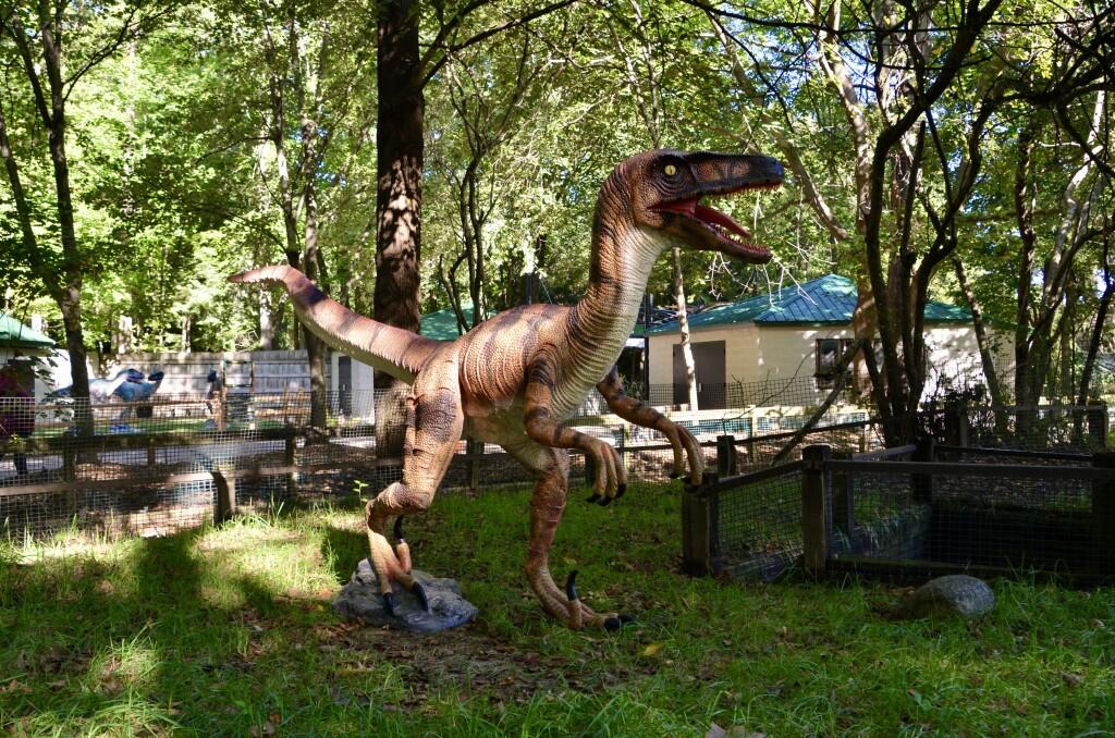 Zoorassic Park Binder Park Zoo Velociraptor