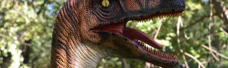 Zoorassic Park at Binder Park Zoo: A First Look at the Interactive Dinosaur Exhibit (PHOTOS)