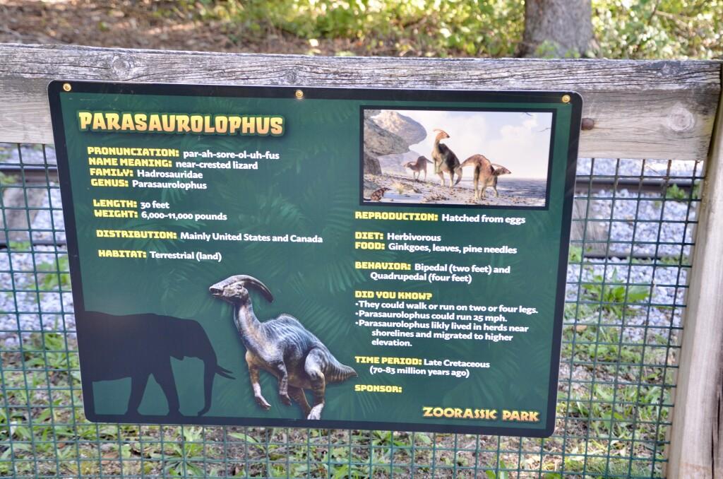 Zoorassic Park Dinosaur Info Parasaurolophus Binder Park Zoo
