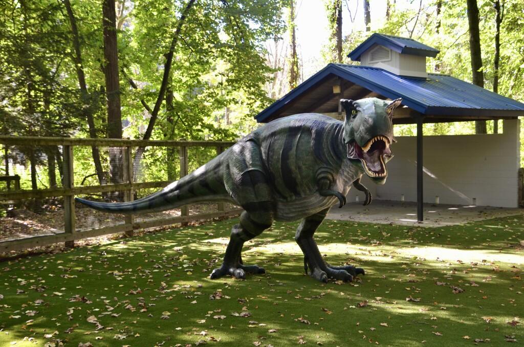 Zoorassic Park Dinosaurs Binder Park Zoo Tyrannosaurus Rex